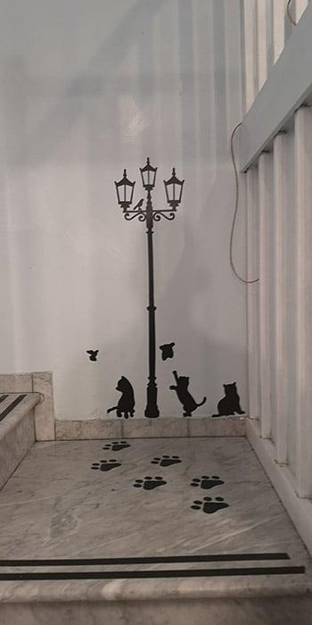 Torino bar gatti