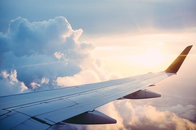 Durante il volo