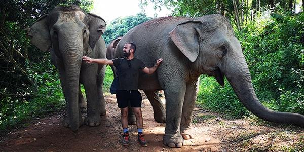 Asian Elephant Projects tour con gli elefanti a Chiang Mai