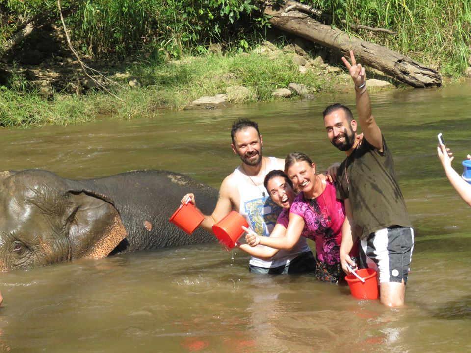 Bagno nel fiume con elefanti