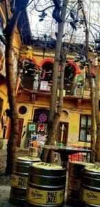 Grandio Jungle Bar