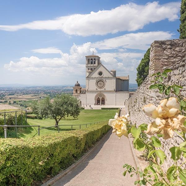 La-Basilica-di-San-Francesco