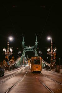 Ponte della Libertà di Budapest