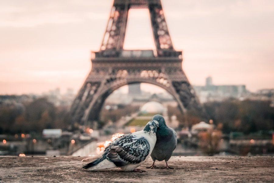 Parigi Viaggio d'amore lgbt